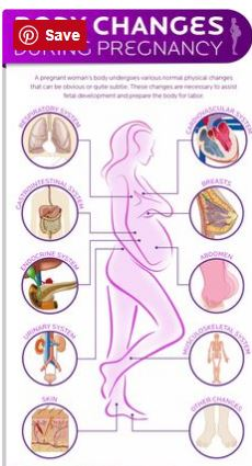 pregnant symptoms