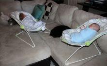 Baby Bouncer #1